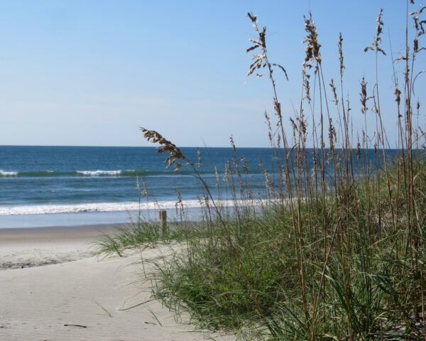 Beach Scene by Carolyn Langley