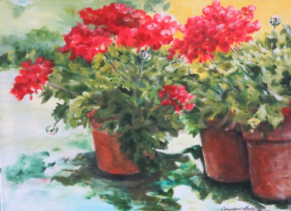 Red Geraniums Pots by Carolyn Bell
