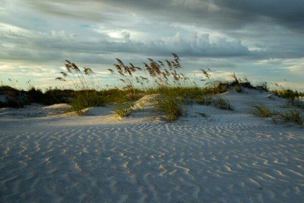 Winter Beach by Sean Leahy